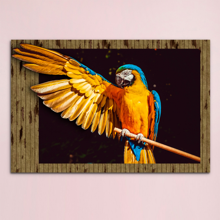 3d картина - Попугай Ара