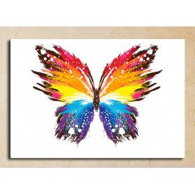 Бабочка(абстракция)
