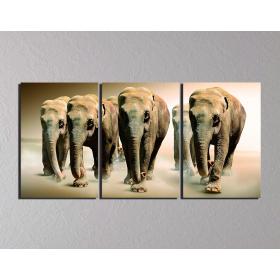"""""""Стая слонов"""""""