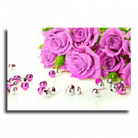 Розы на белом фоне
