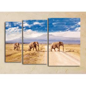 """""""Три слона - Кения"""""""