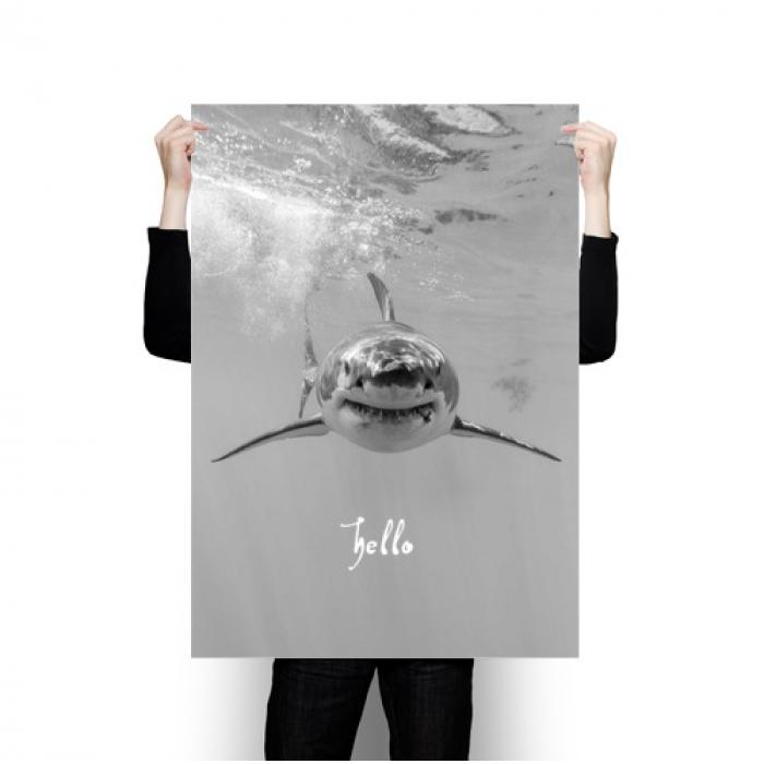 Постер Акула на стену