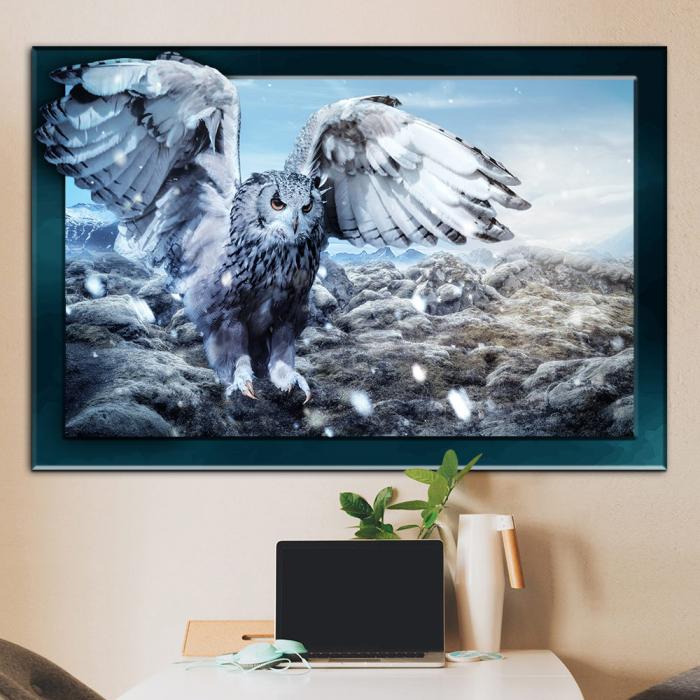 3d картина - Белая сова