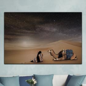 Звездное небо пустыни